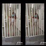 (ВИДЕО) По Афије од финансии и службеничка во битолскиот затвор ја распали Цеца на Тик Ток